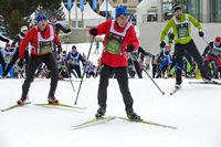 Skilangläufer am Engadin Skimarathon im Aufstieg zum Stazer Wald, St. Moritz, Schweiz