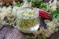 Preparation of tincture from meadowsweet blossoms