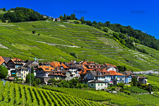 Winzerdorf Epesses in der Weinbauregion Lavaux, UNESCO Welterbe, Waadt, Schweiz