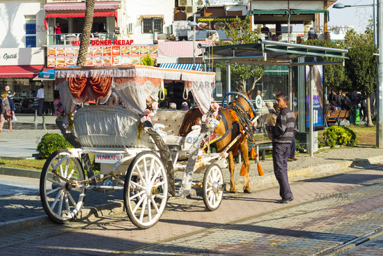 Kaleici Horse Drawn Carriage Rear View Antalya