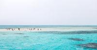 Sinai red sea White Island Egypt.