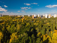 Autumn forest on outskirts of Moscow in Russia