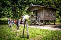 A primitive home in Papua New Guinea