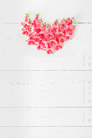 Small red spring flowers arrange in heart shape on white wooden background