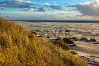 Landschaft in den Dünen auf der Insel Amrum