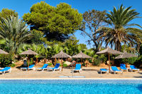 Bright colours sunny day empty blue sun bed under straw parasols near swimming pool, palm tree tropical nature beautiful landscape. Concept vacation and holiday, summer pleasure activities outdoors