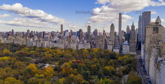 Fall Color Autumn Season Buildings of 5th Avenue NYC