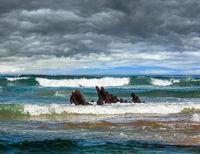 Sea surf and small rocks