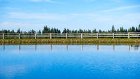 Tranquil lake with trees reflected symmetrically in the clean blue water