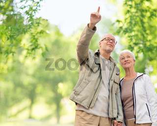 happy senior couple over green natural background