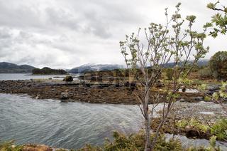 Kvernesfjorden, Vevang
