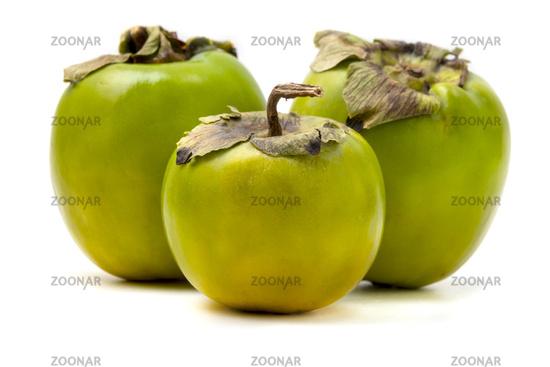 Green Diospyros kaki