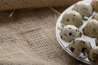 Fresh organic quail eggs in plastic tray on hemp fabric burlap. Space for text