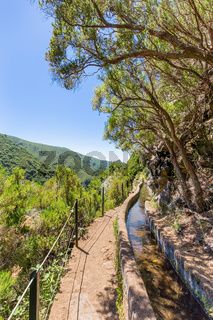 Portuguese landscape with levada and trees
