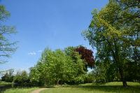 Landschaft 293