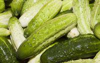 washed green ripe cucumbers