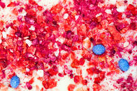 Abstract colorful fruit background - dried candied fruits immersed in white chocolate, chokeberry, cranberry, strawberries, raspberries and blueberries