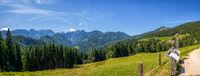 Sunny summer landscape with Solcava panoramic road, Logarska Dolina,Slovenia.A popular tourist and travel destination