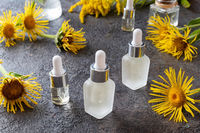 Bottles of essential oil with elecampane plant