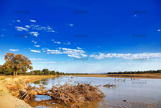Landschaft am Luangwa, South Luangwa Nationalpark, Sambia | landscape at the Luangwa River, Zambia