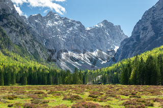 Krma valley in the Slovenian Alps