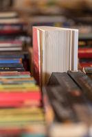 Eine Fülle an Bücher unterstützen die Freude am Lesen