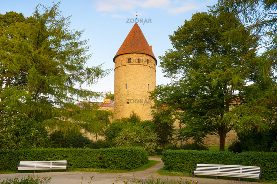 Park Fortress  Old Town Tallin