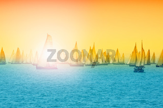 Sailing in Hungary at Lake Balaton. Blue Ribbon cup and other sailing challenge