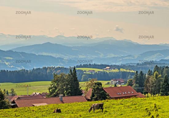 Alpensicht bei  Weiler-Simmerberg, Allgäu