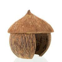 Tropical straw hut