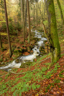 Ilsetal Harz Wasserfall