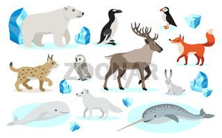 Set of polar animals icons, isolated on white background