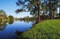 Small lake in Florida, USA