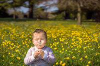 Young girl blowing dandelion on meadow, summer day, blurred background