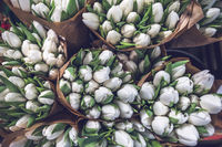 White tulip bouquets in paper bags