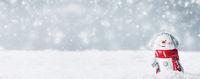 Snowman toy on winter background