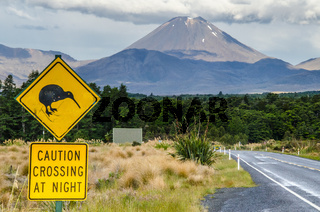 View of Mount Ngauruhoe - Mount Doom from road in Tongariro National Park with kiwi caution crossing at night sign in the foreground and clouds above