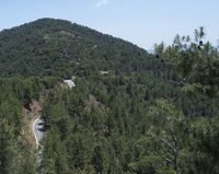 Cyprus mountains covered with forest