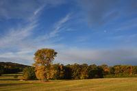 Herbstmorgen in der Oberlausitz