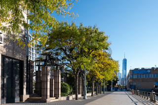 Fall foliage color of Hudson river waterfront pier in Lower Manhattan