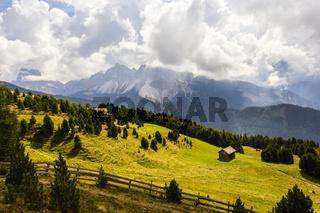 Alm mit Dolomiten in Südtirol, Italien, alm with Dolomites, South Tyrol, Italy