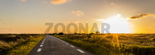Panoramic View, on a dune landscape in the outback with a plain road to the horizon along the sunset in Denmark on the Island Romo