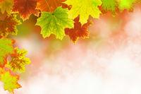 Herbst 30