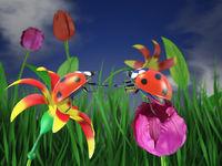 Two ladybugs on flowers.