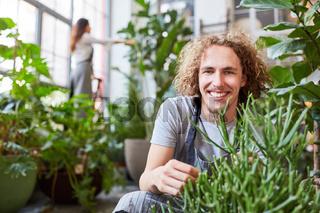 Lächelnder Florist bei der Pflege von Zimmerpflanzen