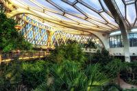 seoul botanic park tropical