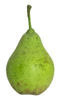 Birne grün und unreif