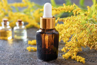 A bottle of goldenrod essential oil with fresh plant