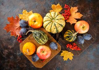 Autumn harvest stll life