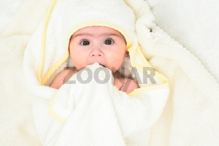 Adorable 6 months old Baby girl infant on a bed on her belly with head up looking into camera with her big eyes. Natural light.